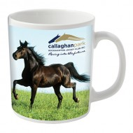 full-colour-durham-mug